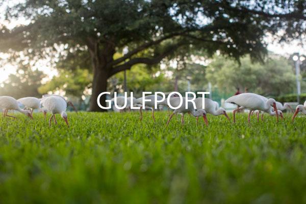 ~Gulfport