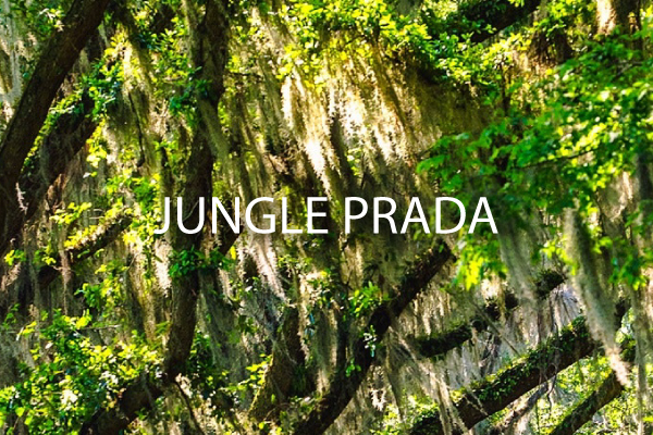 ~Jungle-Prada2