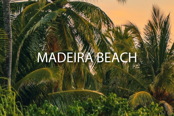 ~Madeira